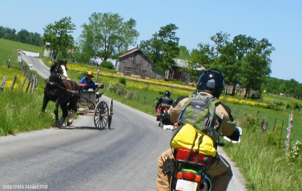 Amish_Horse_TAT
